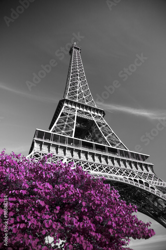 Plakat infrared photography Eiffel Tower