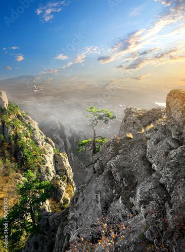 mgla-w-kanionie