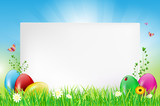 Fototapety Happy Easter card with copy space and eggs in grass
