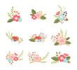 set of lovely flower design elements