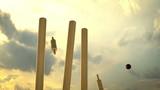 Cricket sport.