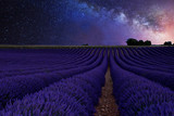 Fototapety beautiful Milky Way above the lavender fields