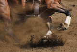 An action photo of a horse sliding and kicking up dirt in a horizontal close up view.