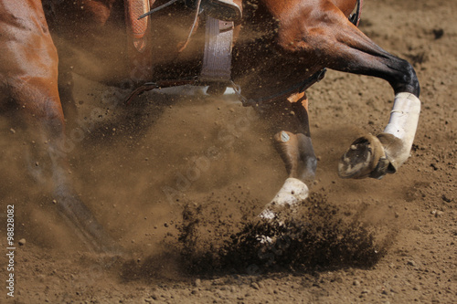 An action photo of a horse sliding and kicking up dirt in a horizontal close up view Poster