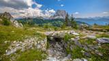 Footbridge Panorama Dolomites