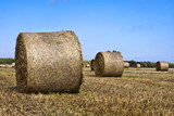 Hay Bales - Landscape of Nature