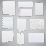 collection of white torn paper. Vector illustration