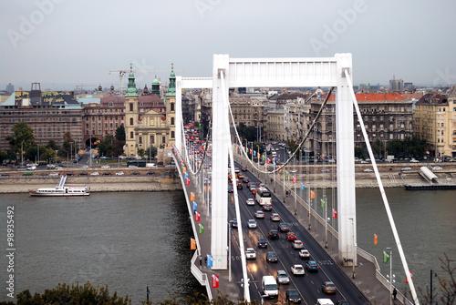 Leinwanddruck Bild Elisabethbrücke, Budapest