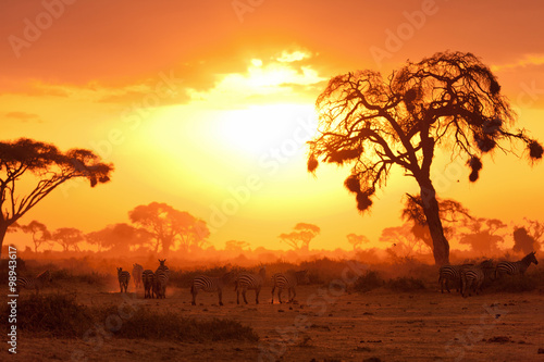 Poster African sunset