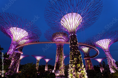 The Giant Trees at the Gardens by the Bay in Singapore at twilight Poster