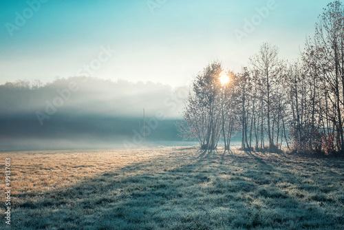 Low fog - 99137013