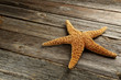Starfish on a grey wooden table