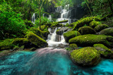 Fototapety beautiful waterfall in green forest in jungle