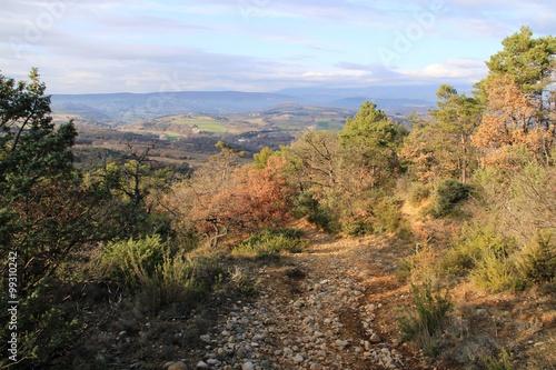 Poster chemin de Haute Provence