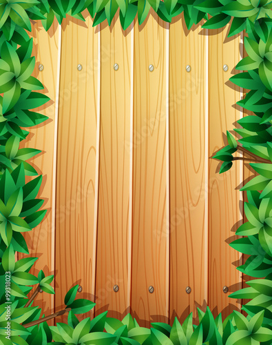 Border design with green leaves on wooden wall quot imagens e vetores de