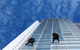 Worker cleaning windows on height