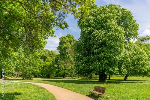 Foto Murales Park im Frühling