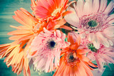 Gerbera flower on vintage-retro background