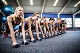 Fototapety Fitness class in plank position with dumbbells