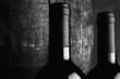 red wine bottle - tilt shift selective focus effect black and white photo