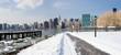 New York City in Winter, panoramic image