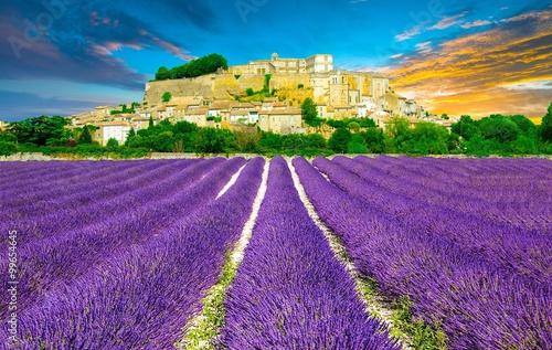 Keuken foto achterwand Snoeien Provence au coucher de soleil, Sud de la France
