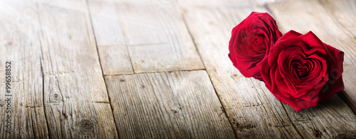 Valentines Card - Sunlight On Two Roses In Love