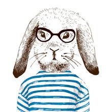 Illustration de lapin habillé