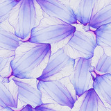Watercolor Seamless pattern with Purple flower petal