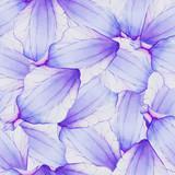 Watercolor Seamless pattern with Purple flower petal - 99961472