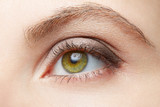 Fototapety Green woman eye beauty with light brown make up, nude colors