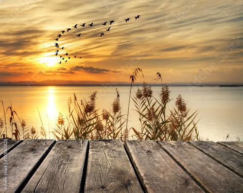 amanecer en la orilla del lago