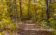Hiking The North Country Trail. Blue blazes mark the North Country Trail as it winds through the wilderness of Michigan's Upper Peninsula.