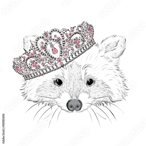 Vintage. Fashion & Style. Print. Hipster. Card. Raccoon in the crown. - 100185606