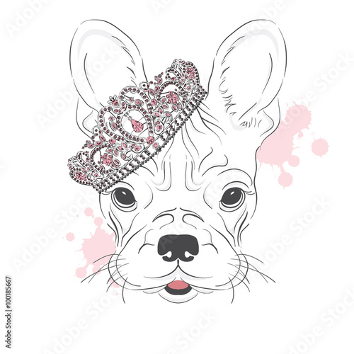 Vintage. Fashion & Style. Print. Hipster. Card. French Bulldog. - 100185667
