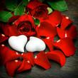 Obrazy na płótnie, fototapety, zdjęcia, fotoobrazy drukowane : Red roses and two hearts. Valentines Day or Wedding vintage