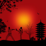 Karate in the beautiful asian landscape