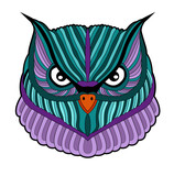 A beautiful colored owl head vector, testa di civetta colorata vettoriale su sfondo bianco