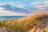 Fototapety Beach Background. Sand dune and dune grass with a blue sky and blue water horizon in the background.