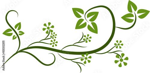 Naklejka floral decorations on white background