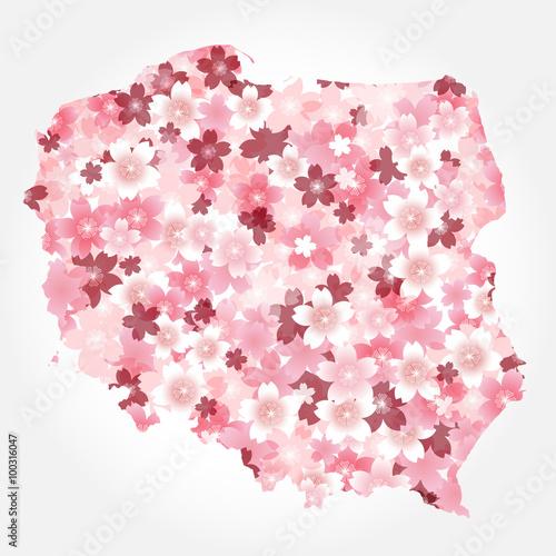 ポーランド 地図 国 桜 - 100316047