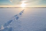 kroky na sněhu na zamrzlém jezeře ve finsku slunečný den v zimě