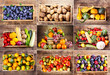 collage of various fruits and vegetables - 100366876