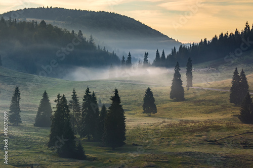 fog on hot sunrise in mountains - 100373099