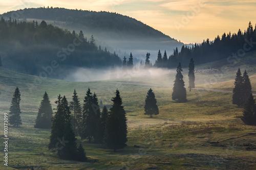 fog on hot sunrise in mountains - 100373099