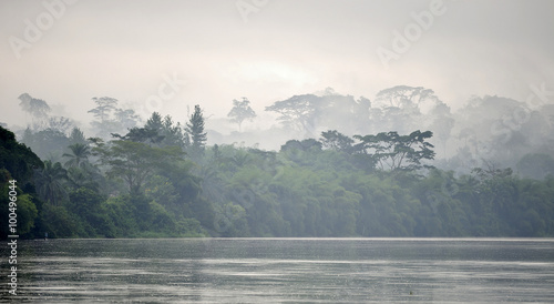 Sangha River. Morning fog on the African river Sangha. Congo. - 100496044
