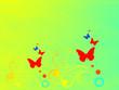 Obrazy na płótnie, fototapety, zdjęcia, fotoobrazy drukowane : Красные бабочки на  желтом фоне.