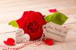 Obrazy na płótnie, fototapety, zdjęcia, fotoobrazy drukowane : Valentinstag