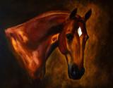 Fototapeta Classical horse portrait painting