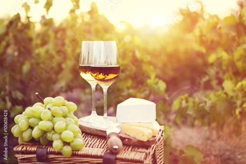 Various sorts of cheese and two glasses of white wine Poster
